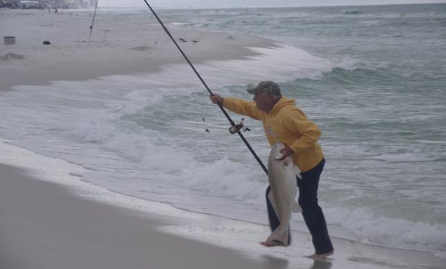 Fishing Destin Guide